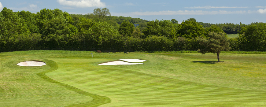 Aylesford Course Course at Forest of Arden Marriott Hotel & Country Club Image