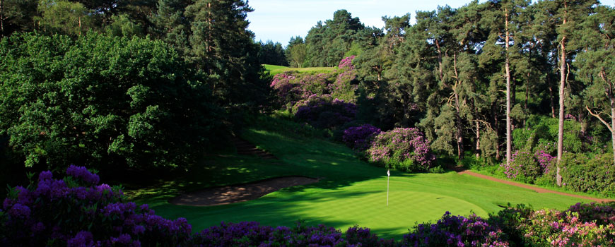 Dukes Course at Woburn Golf Club