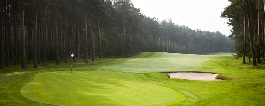 Duchess Course Course at Woburn Golf Club Image