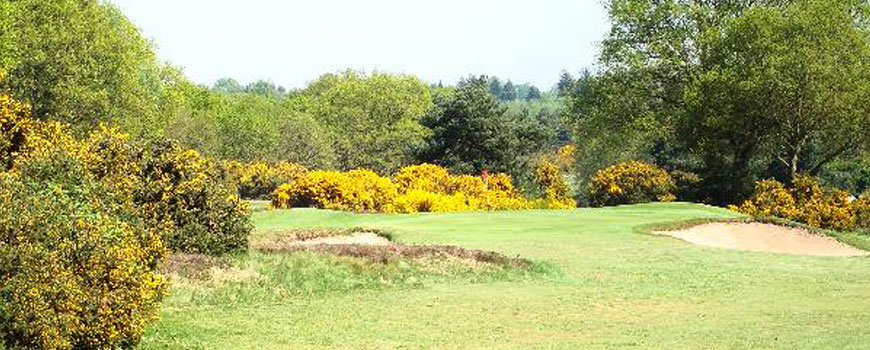 Forest Course  at  Woodbridge Golf Club