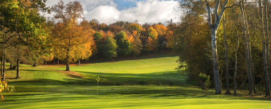 The Wood and The Lakes at Sandford Springs Hotel and Golf Club