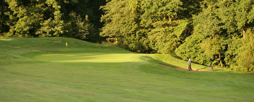 Lakes Course Course at Q Hotels Belton Woods Image