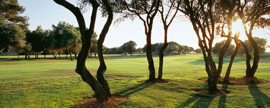 East Course  at  Marriott Son Antem Golf Resort and Spa
