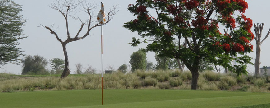 Fire Course at Jumeirah Golf Estates Image