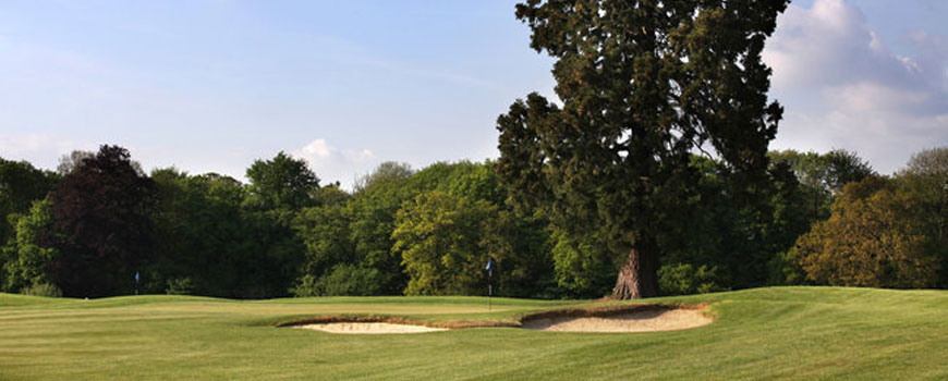 Manor Course  at  Aldwickbury Park Golf Club