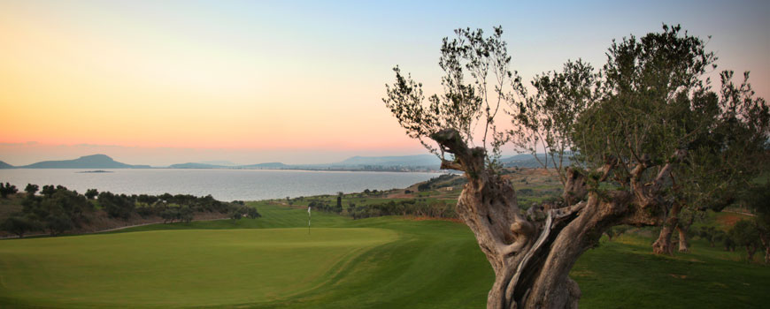 The Bay Course at Costa Navarino
