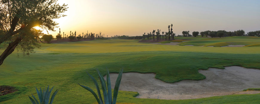 Course at Royal Palm Marrakech Image